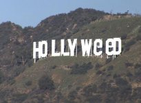"""Hollyweed"": Bromista modifica icónico letrero"